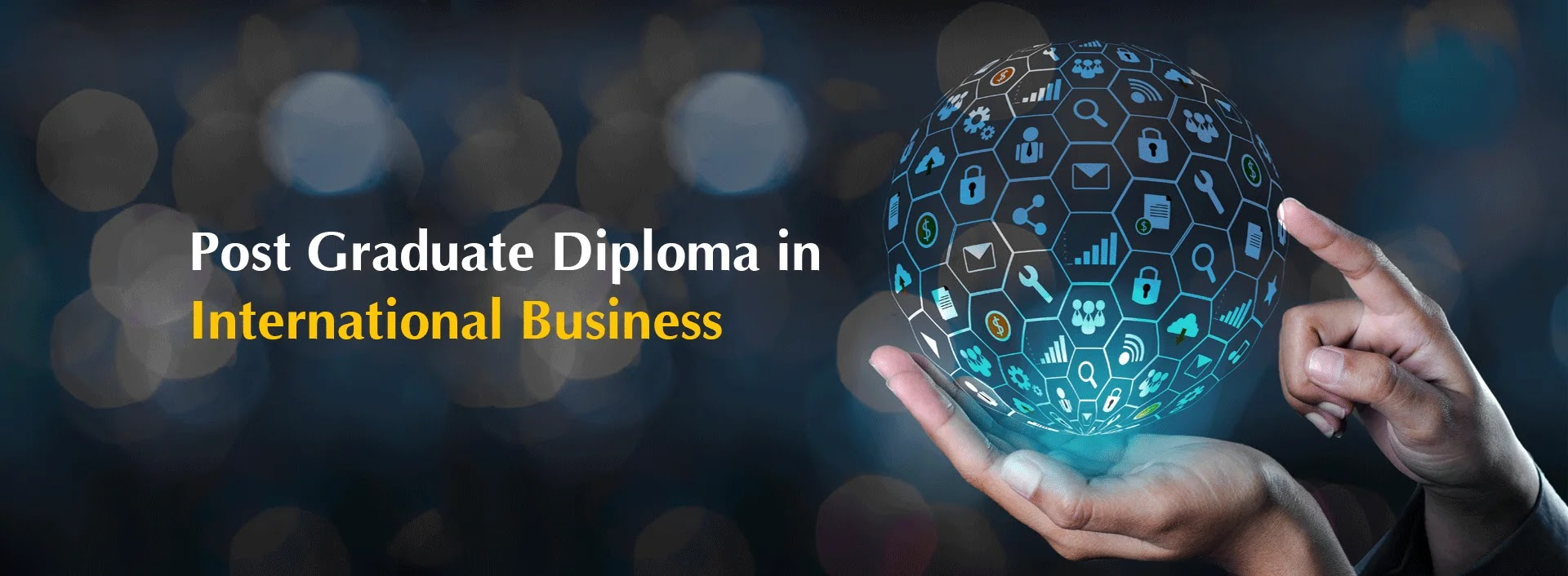 Post Graduate Diploma in International Business Course